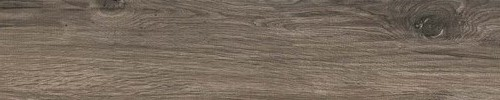 SERIE LOGWOOD OUT  TAUPE 16.4x99.8 - Boite de 0.980m2